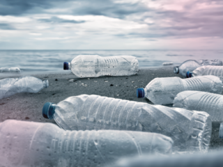 BWT lance la « Bottle Free Zone » pour lutter contre l'usage des bouteilles en plastique