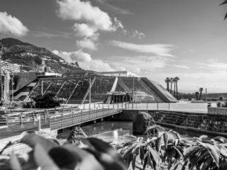 L'Exposition, Monaco et l'Automobile, de 1893 à nos jours, aura lieu du 11 juillet au 6 septembre 2020 au Grimaldi Forum Monaco