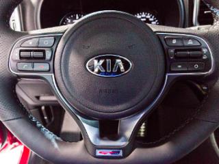 Kia Motors France, partenaire officiel et historique d'EVER Monaco 2020